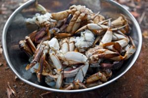 Fresh cooked dungenous crab.