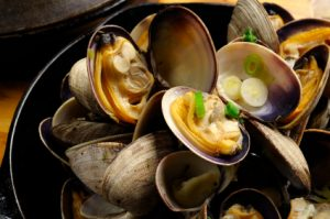 Steamed Cooked Manila Clams